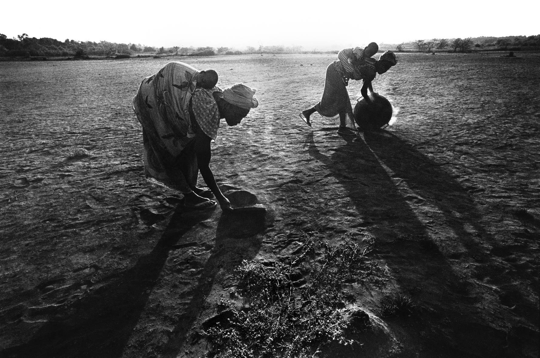 Salt production. Guinea-Bissau.